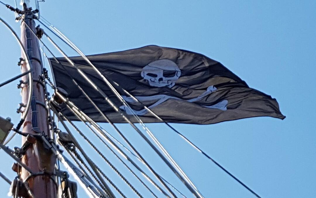 Info om seglingarna i sommar finns nu på hemsidan